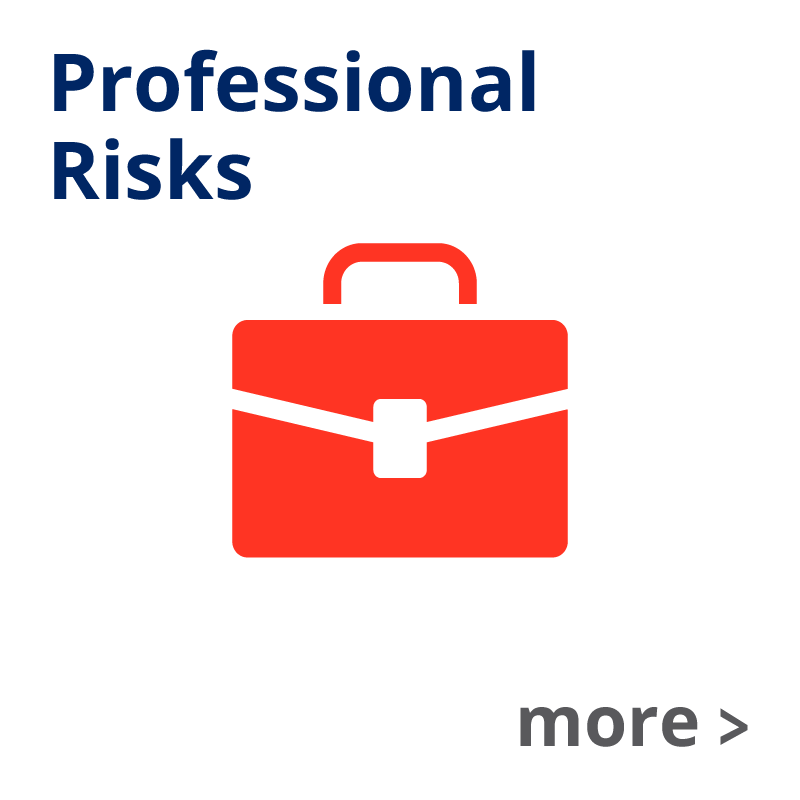 Professional Risks Insurance